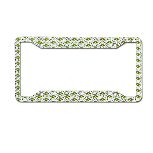 Jackie Prout ss Childish Repeating Smiling Cartoon Characters and Lilies Fantastic Kids Fairytale License Plate Frame Holder Aluminum Car Tag Frame 4 Hole and Screws