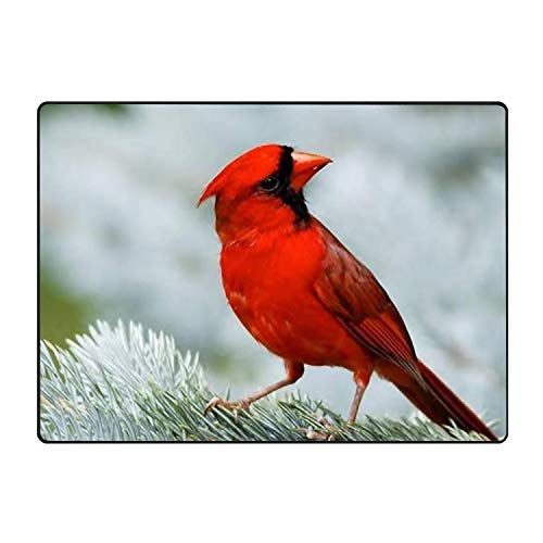 - Red Winter Cardinals Non-Slip Kitchen Mat Rubber Backing Doormat Runner Rug