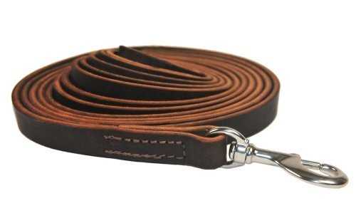 Dean and Tyler Stitched Track Dog Leash, Brown 13-1/2-Feet by 1/2-Inch Width With Stainless Steel Hardware. by Dean & Tyler (Image #3)
