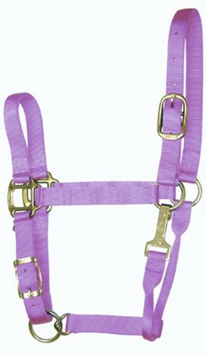 Hamilton 5-8 1-Inch Adjustable Quality Horse Halter with Small Snap for Horses 500 to 800-Pound, (5 Adjustable Horse Halter)
