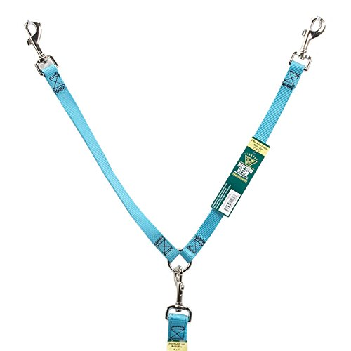 2 Way Coupler - Guardian Gear Nylon 2-Way Small Dog Coupler with Nickel Plated Swivel Clip, 4-Inch, Mailbu Blue
