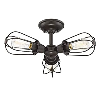 Trade Winds Lighting TW60043ORB Vintage Industrial Retro Metal Wire Loft Close to Ceiling Semi-Flush 100 Watts in Oil Rubbed Bronze