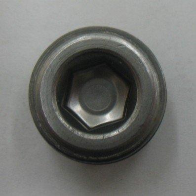 AF MM PIPE PLUG 24 - 24 X 1.5 Metric Pipe Plug (2 Pack) by Generic