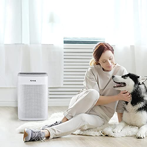 AIRTOK Air Purifier for Home Large Room Office up to 1100ft² H13 True HEPA Air Filter Cleaner for Smoke, Dust, Odors, Pet Dander 25dB Quiet (Available for California)