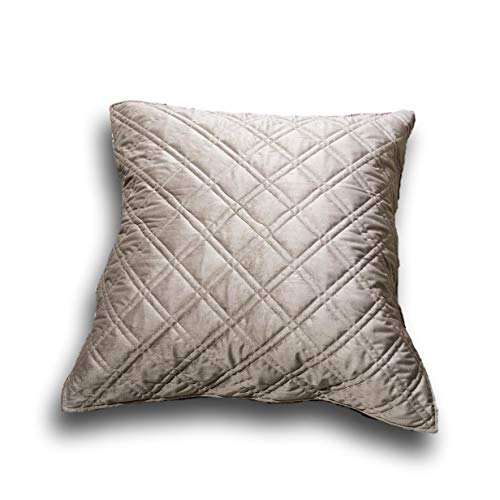DaDa Bedding Elegant Euro Pillow Sham - Velveteen Soft Double Sided Quilted Cover - Warm Taupe Grey Velour - 26