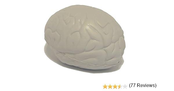 StressCHECK Pelota Anti Estrés - 1 x Cerebro Anti-Estrés - Bola ...