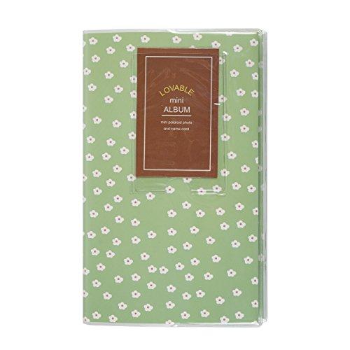 Daisy Pocket (Sprite Science Mini Photo Album for Fujifilm Instax 84 Pockets Green Daisy)