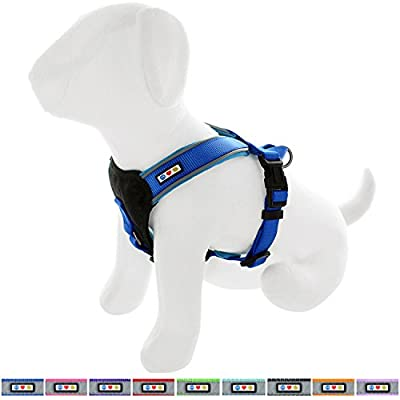 Pawtitas Reflective Dog Harness Padded Dog Harness