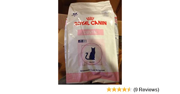 Amazon.com : Royal Canin Feline Dental Cat Food Dry 7.7 Pound Bag (3.5 kg) For Cats and Kittens : Dry Pet Food : Pet Supplies