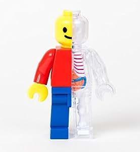 Brick Man Funny Anatomy by Jason Freeny
