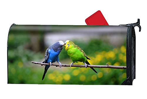 XXXRong Animal Budgerigar Birds Parakeet Budgie Kiss Personalized Mailbox Cover Magnetic Fits Standard-Sized Mailboxes -