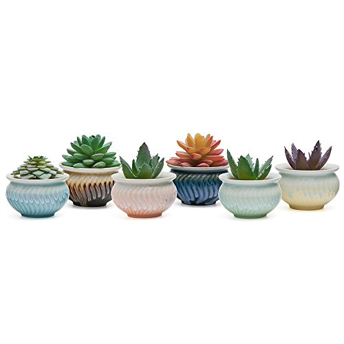SUN-E 3.2 Inch Container Planter Ceramic New Modern Style Hexagonal laze six color Base Serial Set Succulent Plant Pot Cactus Plant Pot Flower Pot 6 In Set