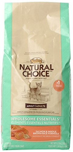 Natural Choice Wholesome Essentials - Salmón para gato adulto y ...