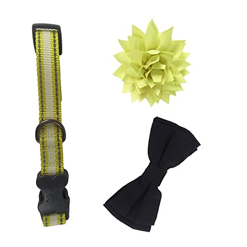 Bow & Arrow Pet High Visibility Reflective Dog Collar With 1 Bow Tie Slide and 1 Flower Slide, Large, Neon Yellow