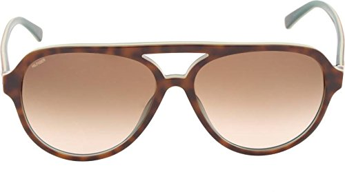 ee892b051c2c Image Unavailable. Image not available for. Colour: Tommy Hilfiger Gradient  Aviator Men's Sunglasses - (7952 Hav/Blu C3 59 S