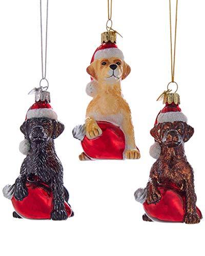 (Kurt Adler Glass Noble Gems 3 Assorted Labrador Retriever Christmas Ornaments)