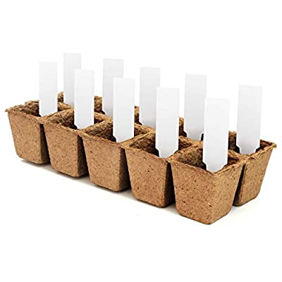 Daniel's Plants Plantable Seed Starter Tray - 10 Seedling Trays | 100 Peat Pots | Biodegradable Compostable Planting Pots | Peat Pots for Seedlings Seed Starter Tray | Bonus 10 Plant Labels: Garden & Outdoor