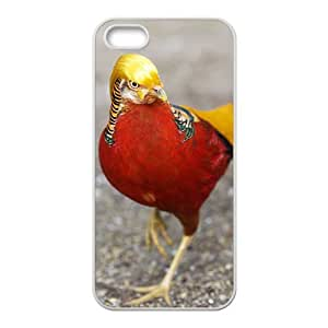 Pheasant Hight Quality Plastic Case for Iphone 5s