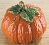 Gourmet Home Collection Medium Ceramic Pumpkin Soup Tureen