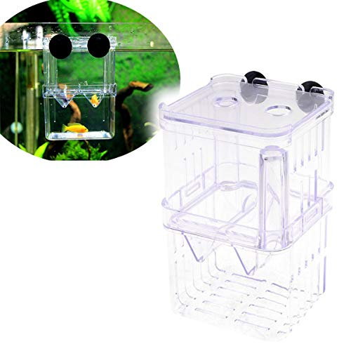 Saim Retangle Shape Aquarium Breeding Breeder Box for Hatchery, Small