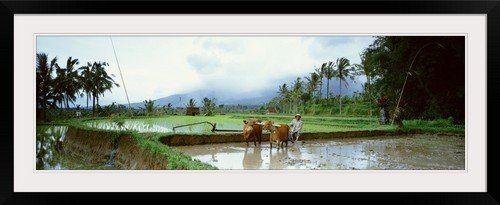 GreatBIGCanvas ''Indonesia'' Photographic Print with Black Frame, 48'' x 15'' by greatBIGcanvas
