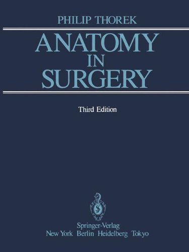 Anatomy in