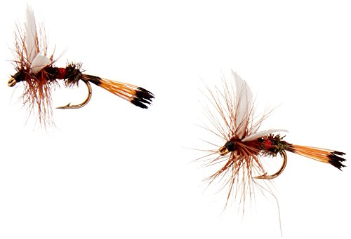 (Crystal River Trout Flies Royal Coachman #14 Feathers)