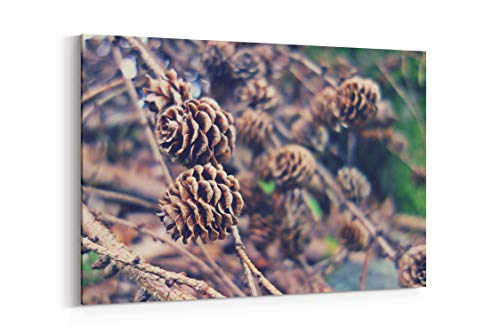 Pinecone Branch Brown and Cone in Llandrillo United Kingdom - Canvas Wall Art Gallery Wrapped 40