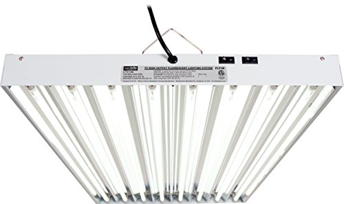 Hydrofarm Agrobrite T5 Grow Light