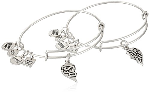 Alex and Ani Charity by Design, Best Friends Set of 2, Rafaelian Silver, Expandable