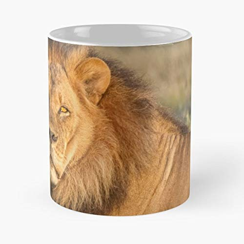 Africa Botswana Kalahari Plains Central Game Reserve -funny Present For My Greatest Boss Male Or Female, Men, Women, Great Office Gift Mugs, Birthday, Leaving, Bold, Cup, 11 Oz