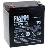 FIAMM Batería de Plomo-ácido 12FGH23 (alta intensidad)