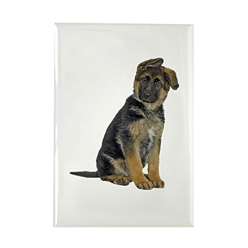- CafePress German Shepherd Puppy Rectangle Magnet Rectangle Magnet, 2