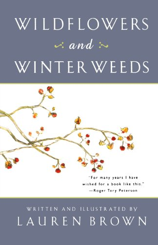 Wildflowers and Winter Weeds (Weeds And Wildflowers In Winter)