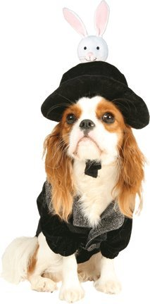 Hat Trick Magician Pet Costume Size Medium by Cinema Secrets (Fancy Dress Magician)
