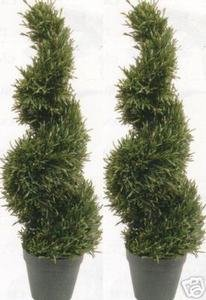 (Silk Tree Warehouse Two 3 Foot Outdoor Artificial Rosemary Spiral Topiary Trees Potted Uv Rated Plants)