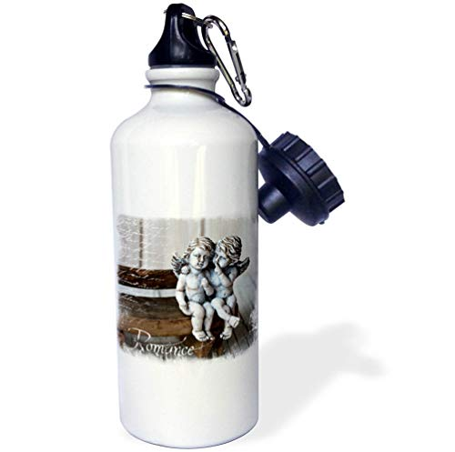 3dRose Andrea Haase Art Illustration - Mixed Media Art with Cute Cherubs and Nostalgic Typography - 21 oz Sports Water Bottle (wb_293868_1)