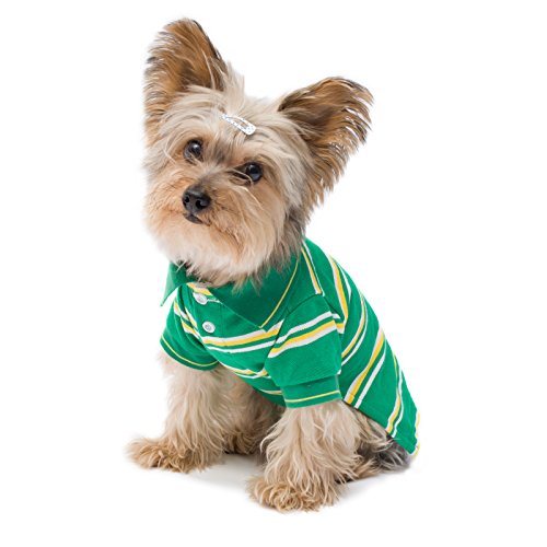 Stinky G Dog Stretch Polo Shirt (#14, Tropical Green Stripes)