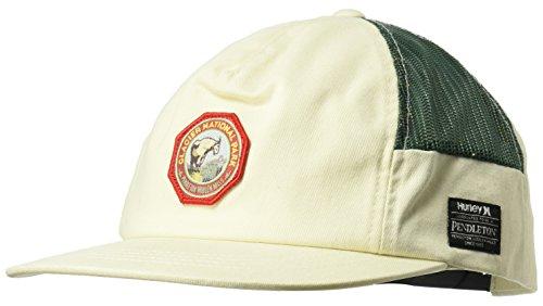 Hurley Men's Pendleton National Park Collection Cap, sail, Qty