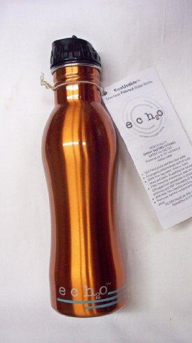 EcoUsable Ech2o 25 oz Stainless Steel Filtered Bottle - Orange