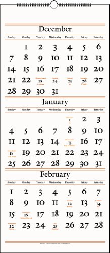 (AT-A-GLANCE 2014 Three-Month Reference Wall Calendar, 12.25 x 27 Inches (SW115-28))