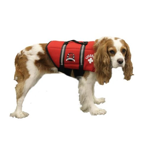 Paws Aboard Neoprene Doggy Life Jacket Extra Extra Small Red 2 - 6 lbs. (Set of 3) by Paws Aboard
