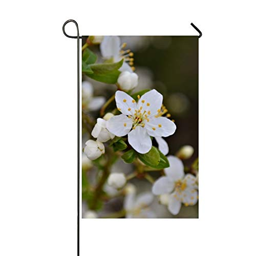 BaiGrid Plumblossomswhite Decorative Flag Premium Decor Garden Flag
