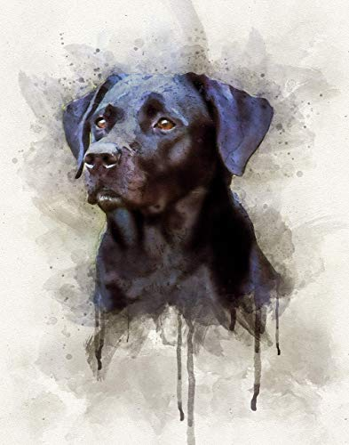 Black Lab Watercolor Art Print in Various Sizes, Labrador Retriever Dog Wall Decor for a Nursery, Home, or Office - A Great Gift for a Brown Lab Lover, Pet Remembrance or Pet Memorial ()