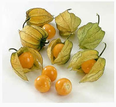 Sweet and Delicious Shaped like a Lantern 20 Sweet Berry Tomato Seeds RARE