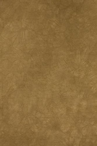 Backdrop Alley Dusty Gold Crush Muslin Photo Background, 10' x 24' by Backdrop Alley