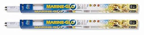 Glo Marine ((2 Pack) A1603 20-Watt Marine-Glo Fluorescent Bulb, 24-Inch)