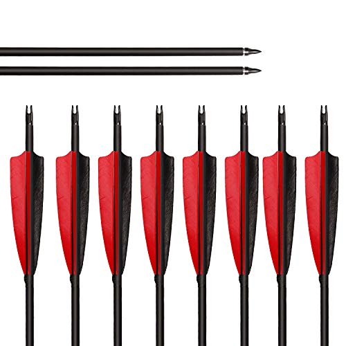 "ARCHERY SHARLY 31"" Carbon Fiber Arrows Targeting Practice Arrows,5"" Black & Red Natural Feather Fletching and Replacement Screw-in Tips for Recurve Traditional Long Bow (12 Pack)"