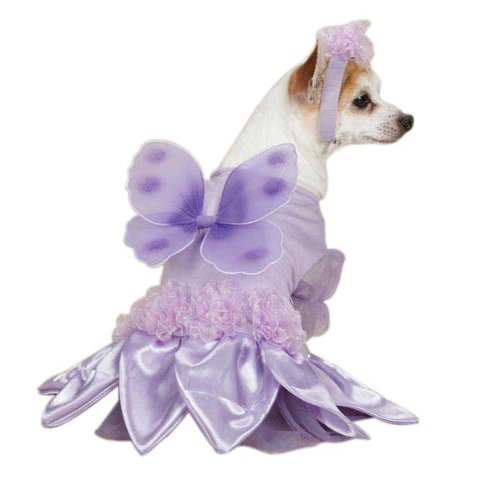 Sugar Plum Fairy Dog Costume Size: Small (12