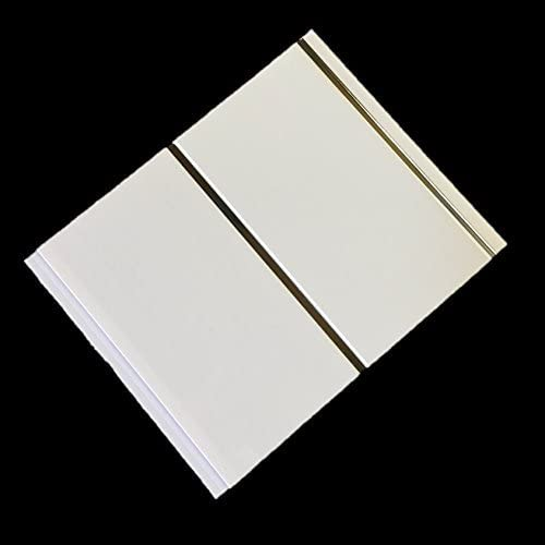 DBS Gloss White Chrome Strip Wall Panels Bathroom Ceiling Cladding PVC Shower Wet Wall Panels (8 Pack)